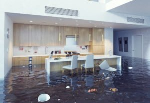 Flooded Kitchen Cropped